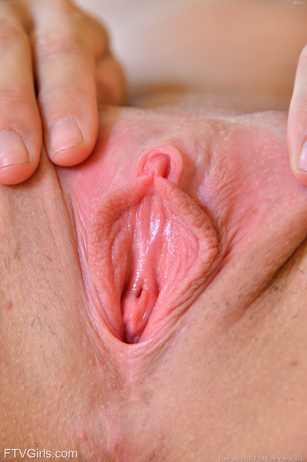 Pink passy porn pa cture